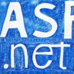 ASP.NET programmers from India