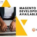 Magento Developer Available