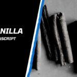 Che cos'è JavaScript Vanilla?